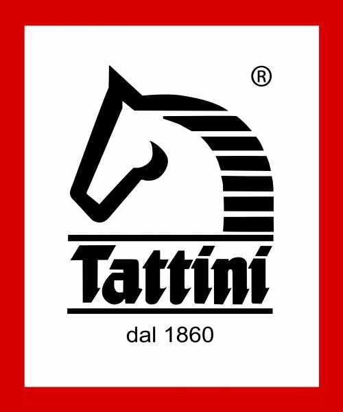 Tattini