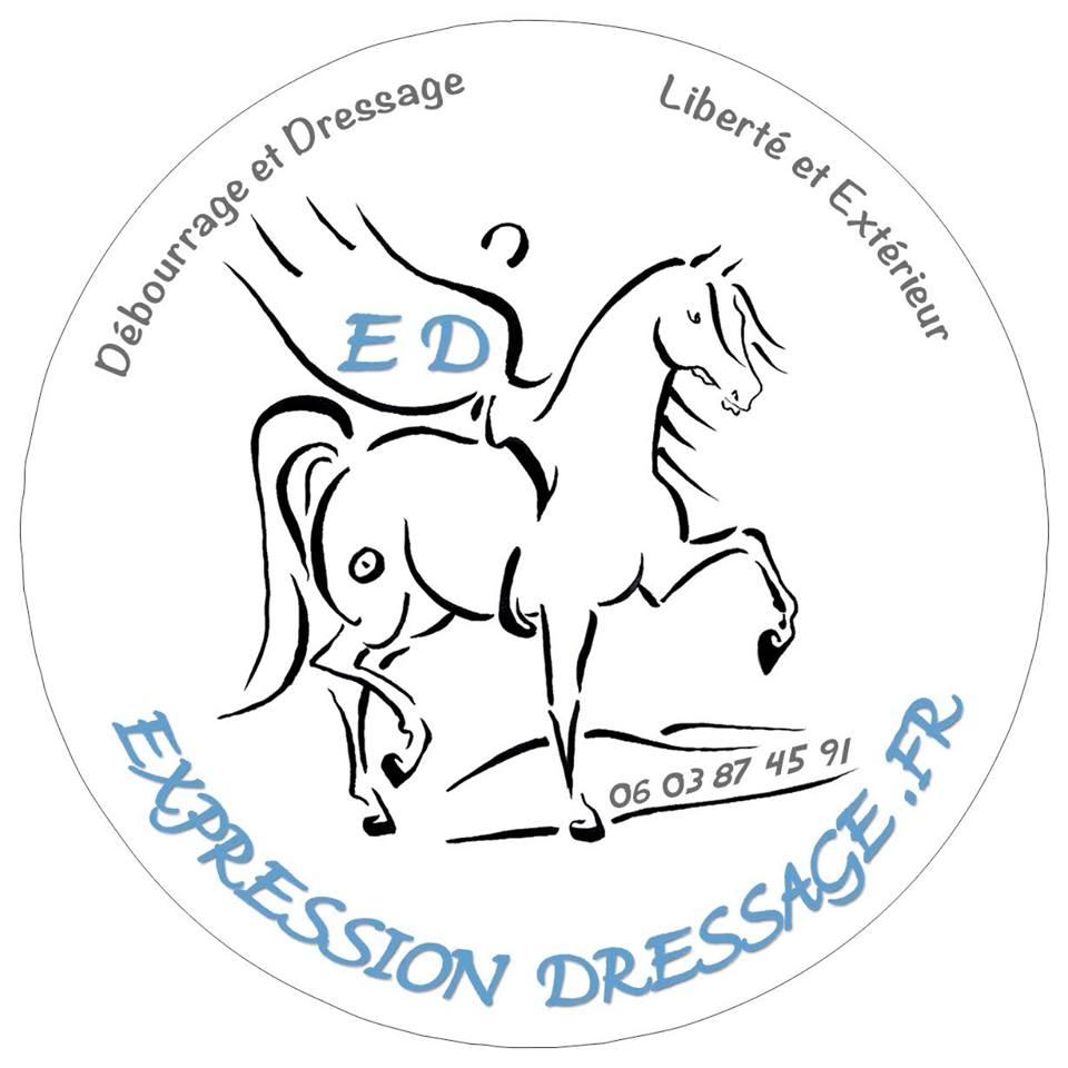 expression dressage
