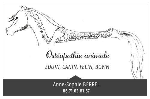 Anne-Sophie BERREL Ostéopathe