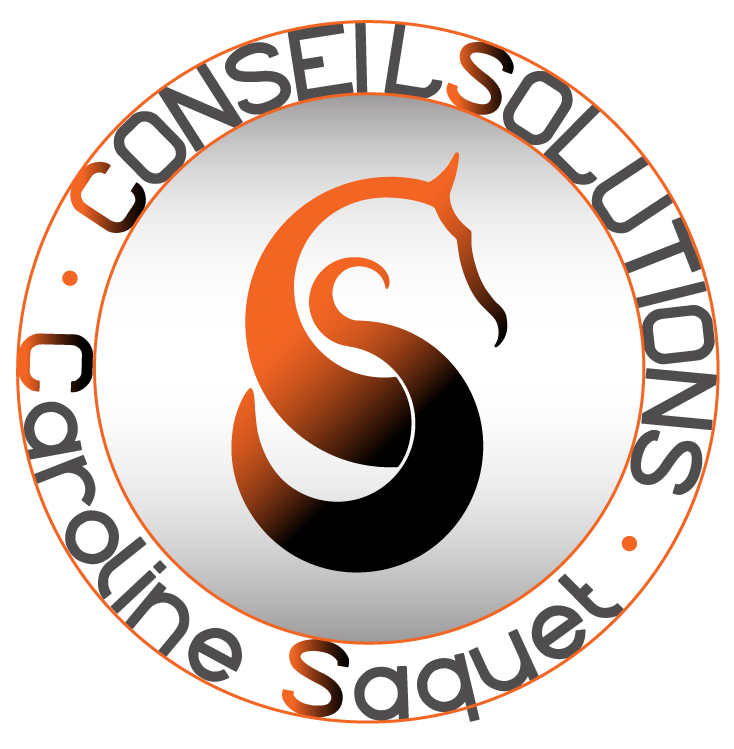 Logo ConseilSolutions